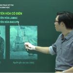 Video ôn thi môn Sinh học về Học thuyết tiến hóa cổ điển và Học thuyết tiến hóa tổng hợp Hiện đại