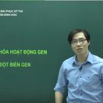Video Ôn thi Quốc Gia môn Sinh học: Điều hòa hoạt động Gen và đột biến Gen