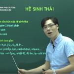 Video Ôn thi THPT Quốc Gia Môn Sinh Học – Hệ sinh Thái