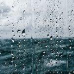 Em hãy  tả cơn mưa rào mùa hạ