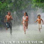 Bài văn mẫu lớp 5: Tả cơn mưa quê em