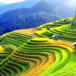 Cảm nhận về bài thơ Đất nước của Nguyễn Đình Thi