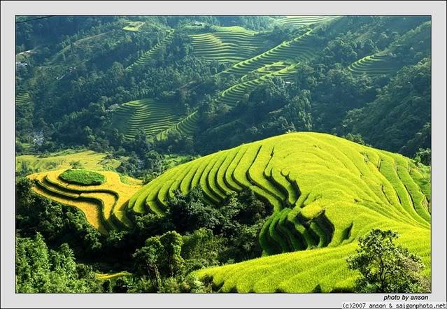 Bài tham khảo: Cảm nhận về bài thơ Đất nước của Nguyễn Đình Thi
