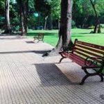 Em hãy tả cảnh một buổi chiều trong công viên.