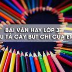 Bài văn tả cây bút chì hay nhất