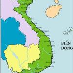 Bài 25: Tình hình chính trị, kinh tế, văn hóa dưới triều Nguyễn (nửa đầu thế kỉ XIX) – ôn thi lịch sử 10 – bài tập trắc nghiệm có đáp án