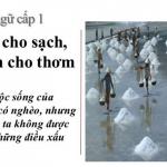 Nghị luận xã hội về câu tục ngữ: Đói cho sạch, rách cho thơm.