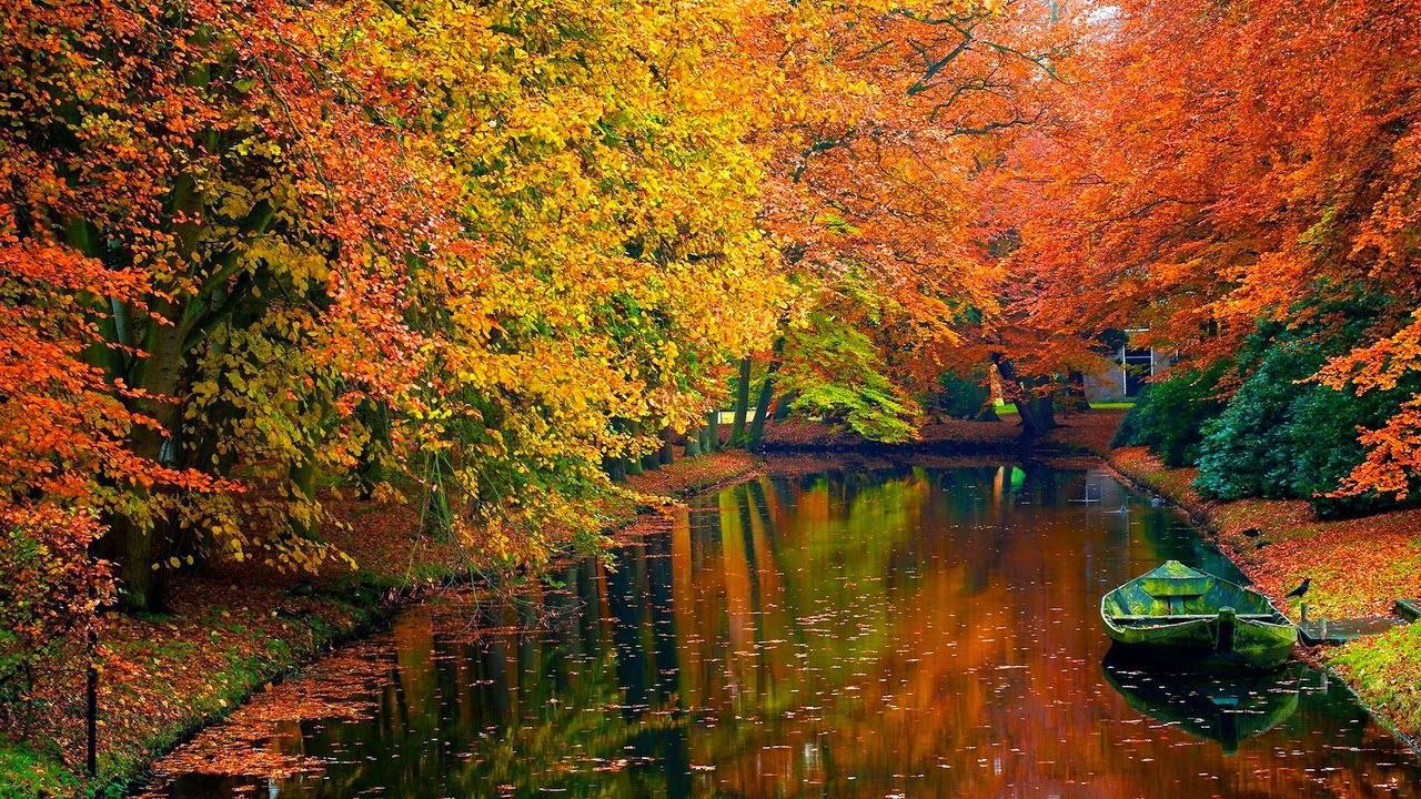 Bài mẫu: Cảm nghĩ về mùa thu