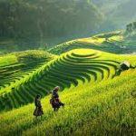 Tình cảm đất nước quê hương thể hiện trong bài thơ Việt Bắc của Tố Hữu.