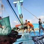 Lập dàn ý đề phân tích bài Đoàn thuyền đánh cá