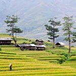 """Phân tích vẻ đẹp thiên nhiên núi rừng Tây Bắc trong bài thơ """"Tây Tiến"""" của Quang Dũng"""