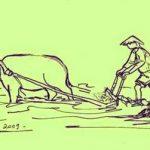 Em hãy thuyết minh về con trâu ở làng quê Việt Nam