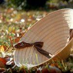 Bài văn mẫu thuyết minh về chiếc nón lá Việt Nam