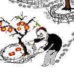Nghị luận xã hội ăn cây nào rào cây ấy