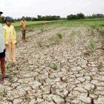 Nghị luận xã hội về hiện tượng biến đổi khí hậu hiện nay
