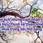 Phân tích những cảm nhận tinh tế của Hữu Thỉnh về thiên nhiên lúc giao mùa trong bài thơ Sang thu.