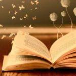 Suy nghĩ về thế giới mở ra trong em qua cuốn sách yêu thích nhất